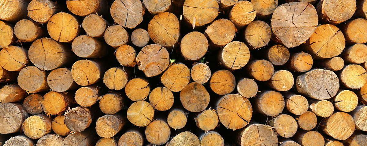 Drewno do kominka drewno kominkowe Warszawa drewno sezonowane Nadarzyn